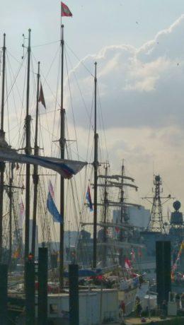 Masteskog på havnen FOTO: Elsa Grimsmo