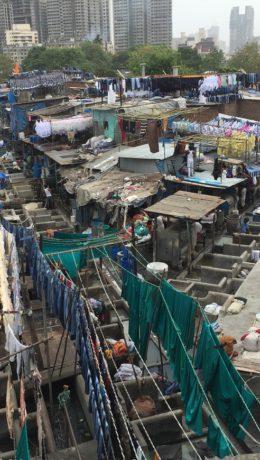 Vaskeriet i Mumbai Foto: Elsa Grimsmo