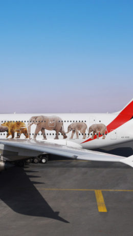 Emirates - United for Wildlife