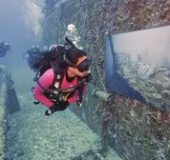 Florida Keysdiving