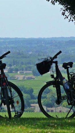 Provence:nyt utsikt og det gode liv