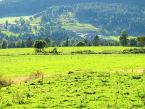FRODIG:Landskapet på Hadeland er vakkert som få.