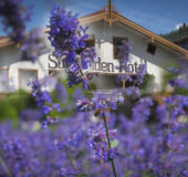hot5_sundvolden_hotel